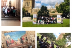 Parliment-pic-collage